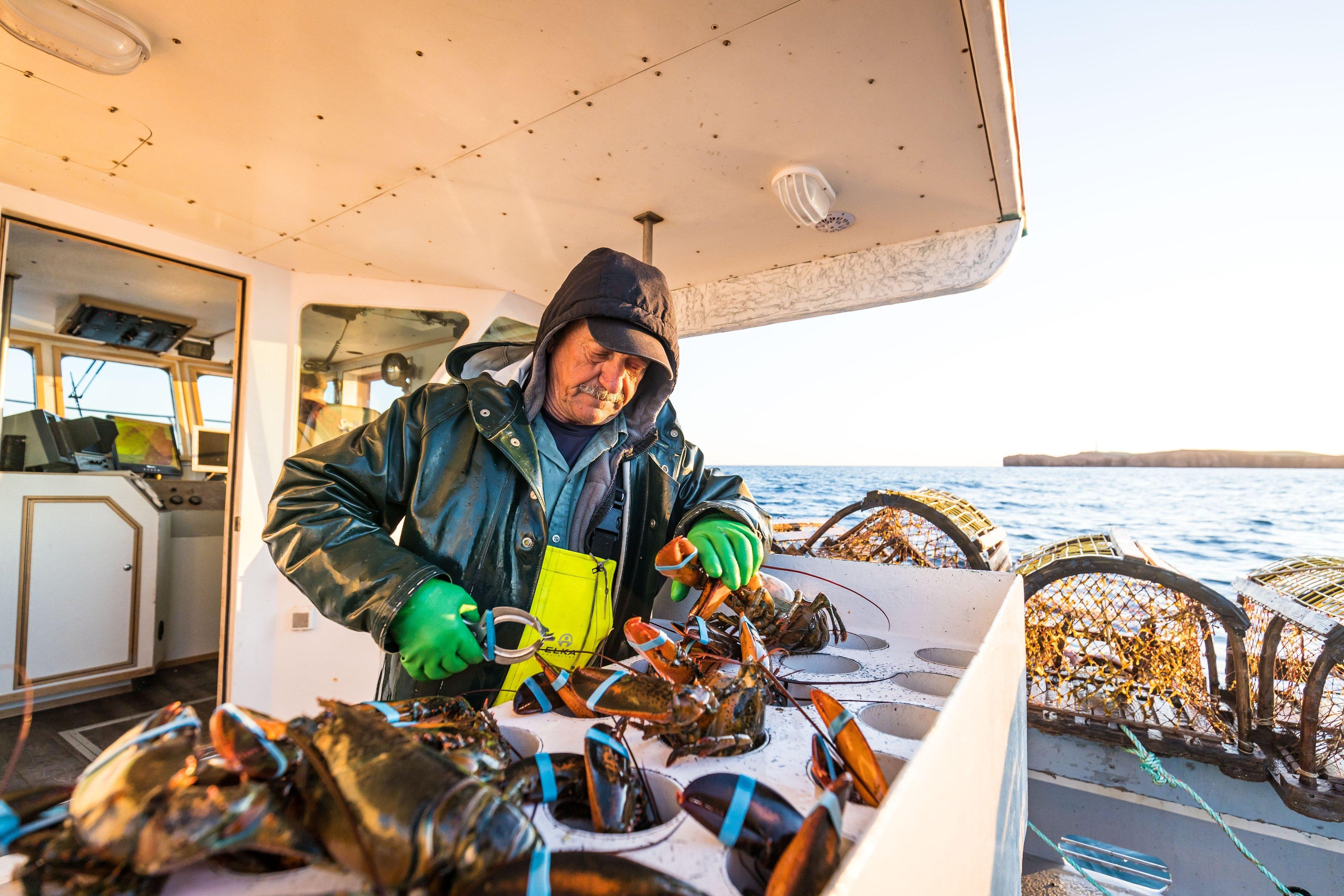 Pêche au homard aux Îles de la Madeleine