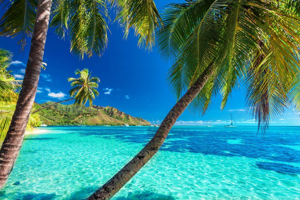 Tahiti en vidéo – sublime destination