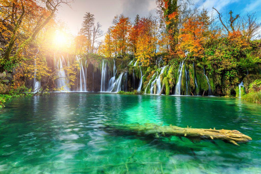 Flamboyante Croatie